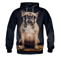 BLUZA Z KAPTUREM MONSIEUR DOGUE